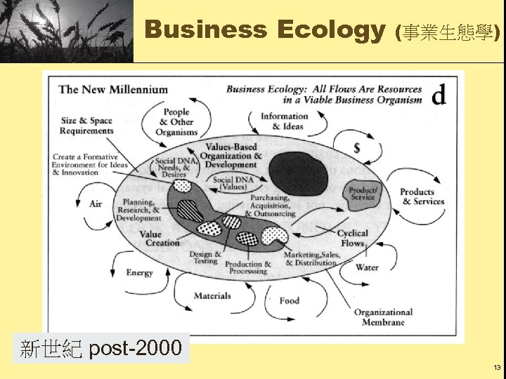 Business Ecology (事業生態學) 新世紀 post-2000 13