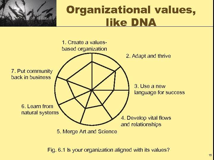 Organizational values, like DNA 1. Create a valuesbased organization 2. Adapt and thrive 7.