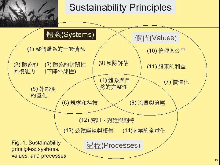 Sustainability Principles 體系(Systems) 價值(Values) (1) 整個體系的一般情況 (2) 體系的 回復能力 (10) 倫理與公平 (9) 風險評估 (3)