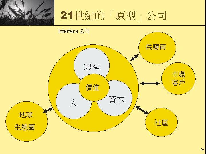 21世紀的「原型」公司 Interface 公司 供應商 製程 市場 客戶 價值 人 資本 地球 生態圈 社區 30