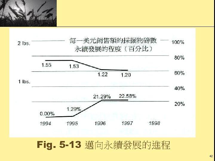 Fig. 5 -13 邁向永續發展的進程 42