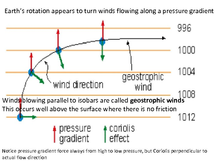 Earth's rotation appears to turn winds flowing along a pressure gradient Winds blowing parallel