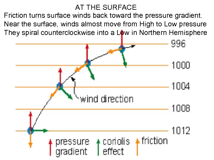 AT THE SURFACE Friction turns surface winds back toward the pressure gradient. Near the