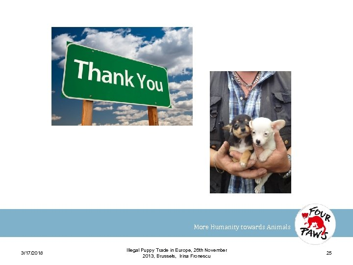 More Humanity towards Animals 3/17/2018 Illegal Puppy Trade in Europe, 26 th November 2013,