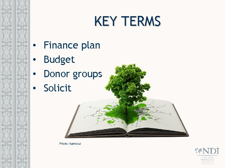 KEY TERMS • • Finance plan Budget Donor groups Solicit Photo: hamioui