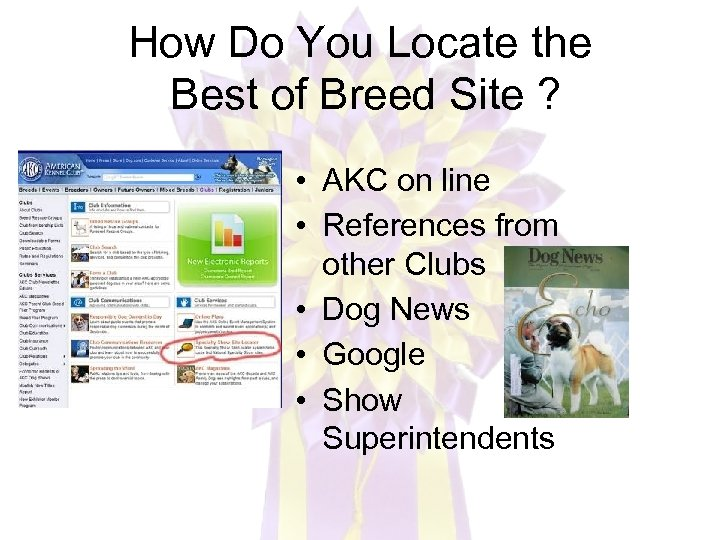 How Do You Locate the Best of Breed Site ? • AKC on line