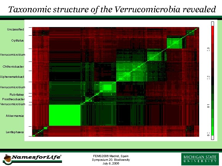Taxonomic structure of the Verrucomicrobia revealed Unclassified Optitutus Verrucomicrobium Chthoniobacter Xiphenematobact Verrucomicrobium Rubritalea Prosthecobacter