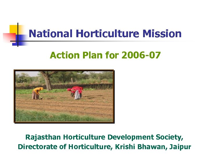 National Horticulture Mission Action Plan for 2006 -07 Rajasthan Horticulture Development Society, Directorate of
