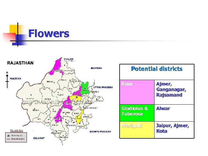 Flowers Potential districts Rose Ajmer, Ganganagar, Rajsamand Gladiolus & Tuberose Alwar Merigold Jaipur, Ajmer,