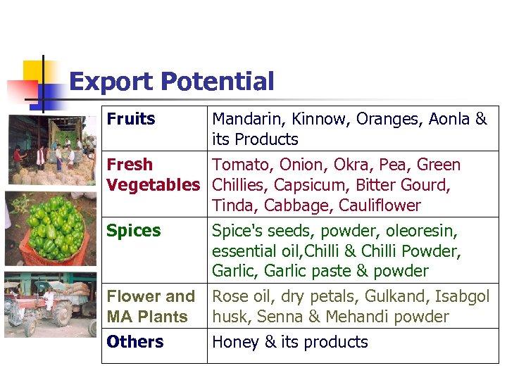 Export Potential Fruits Mandarin, Kinnow, Oranges, Aonla & its Products Fresh Tomato, Onion, Okra,