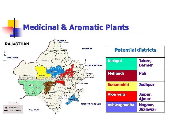 Medicinal & Aromatic Plants Potential districts Isabgol Jalore, Barmer Mehandi Pali Sonamukhi Jodhpur Aloe