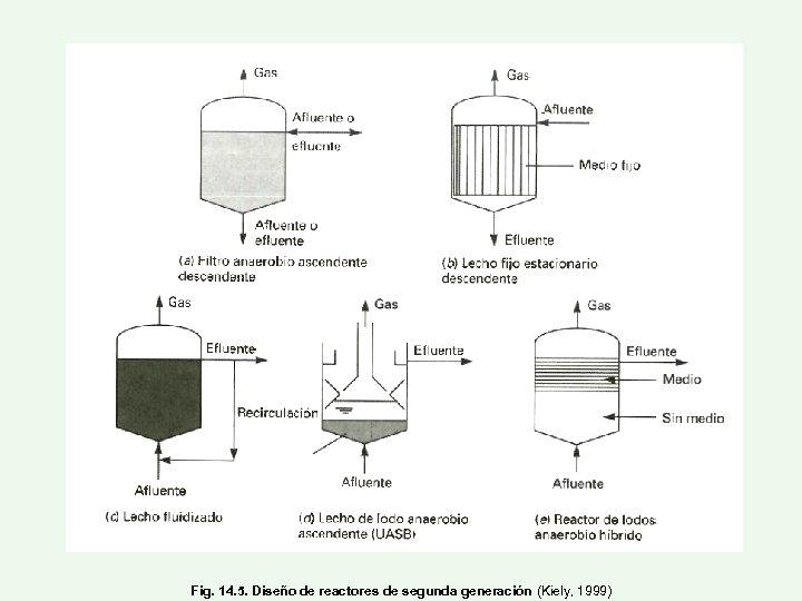 Fig. 14. 5. Diseño de reactores de segunda generación (Kiely, 1999)