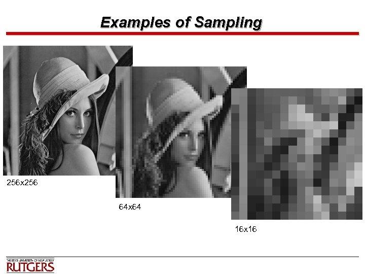 Examples of Sampling 256 x 256 64 x 64 16 x 16