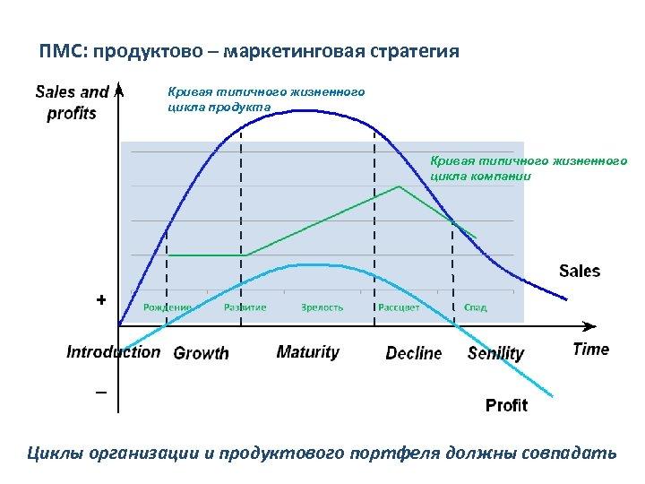 ПМС: продуктово – маркетинговая стратегия Кривая типичного жизненного цикла продукта Кривая типичного жизненного цикла