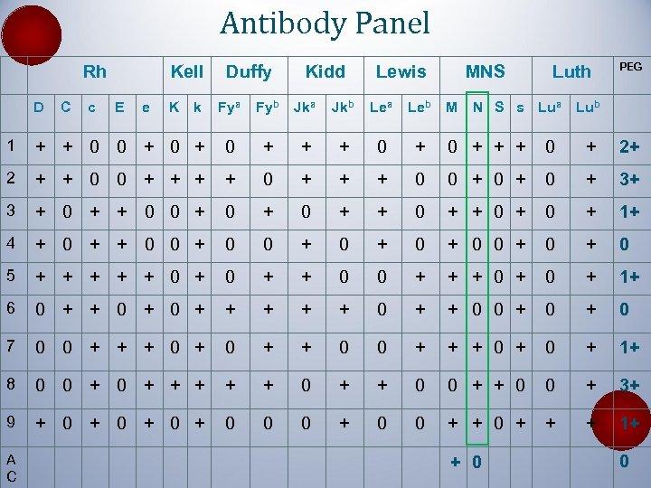 Antibody Panel Rh D C c Kell E e K k Duffy Kidd Lewis
