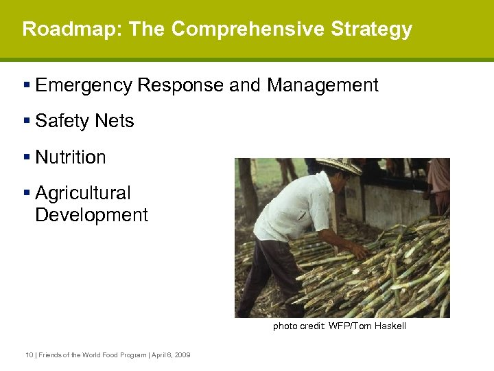 Roadmap: The Comprehensive Strategy § Emergency Response and Management § Safety Nets § Nutrition
