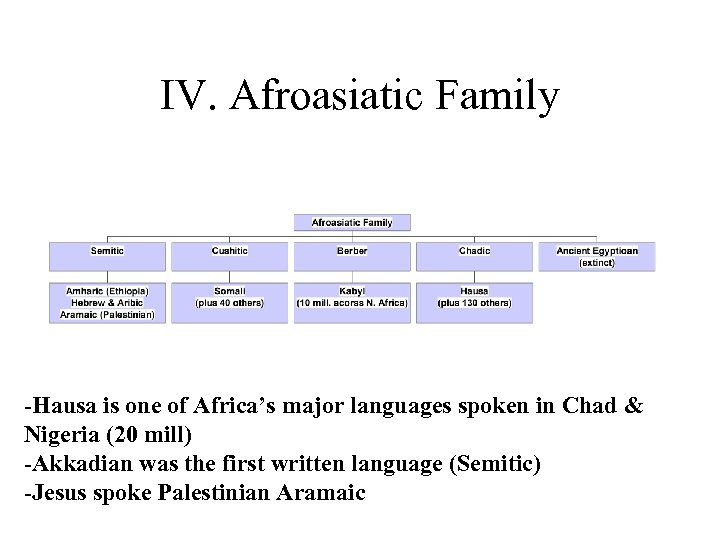 IV. Afroasiatic Family -Hausa is one of Africa's major languages spoken in Chad &