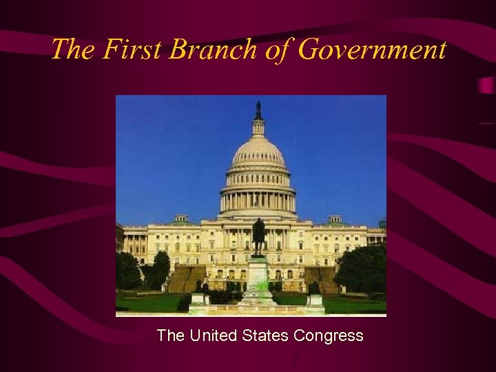 The First Branch of Government The United States Congress