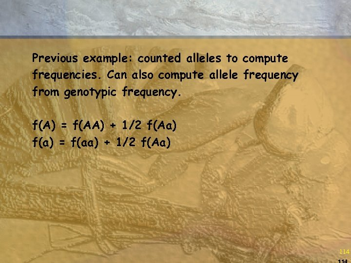 Previous example: counted alleles to compute frequencies. Can also compute allele frequency from genotypic