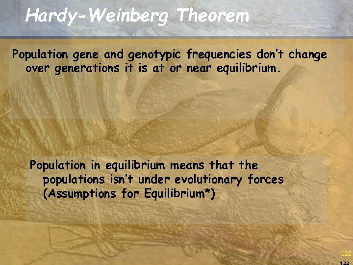Hardy-Weinberg Theorem Population gene and genotypic frequencies don't change over generations it is at