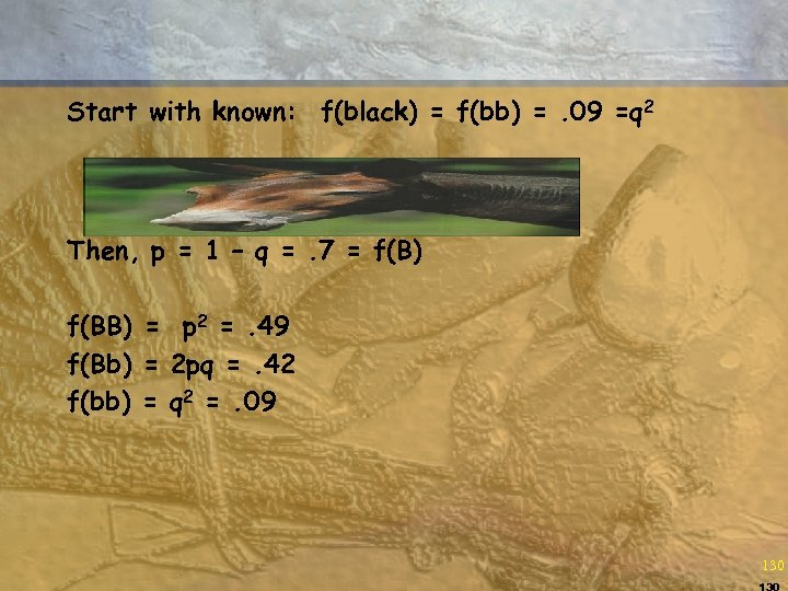Start with known: f(black) = f(bb) =. 09 =q 2 Then, p = 1