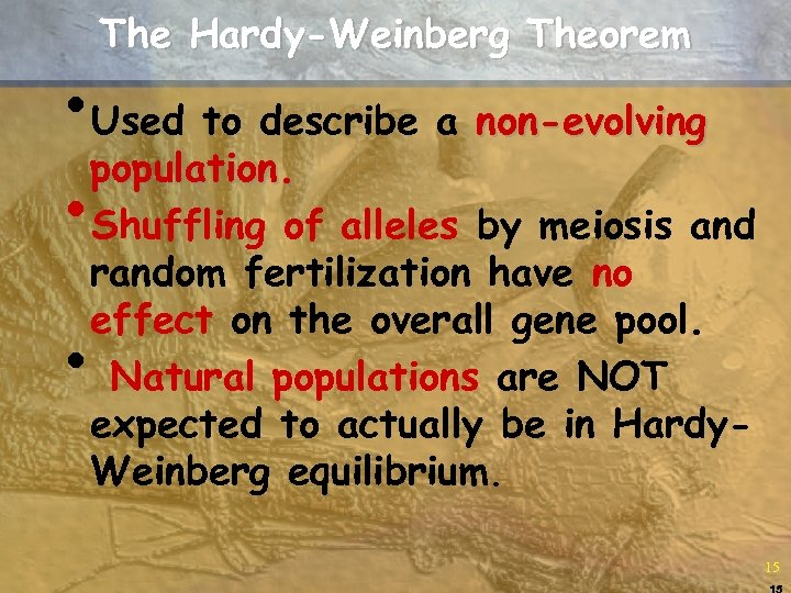 The Hardy-Weinberg Theorem • Used to describe a non-evolving population. • Shuffling of alleles