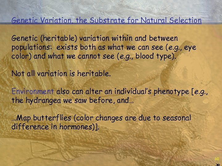 Genetic Variation, the Substrate for Natural Selection Genetic (heritable) variation within and between populations: