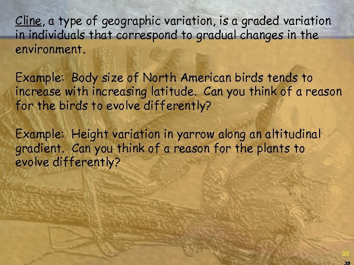 Cline, a type of geographic variation, is a graded variation in individuals that correspond