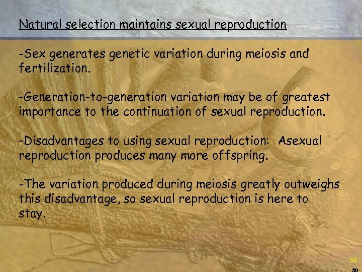 Natural selection maintains sexual reproduction -Sex generates genetic variation during meiosis and fertilization. -Generation-to-generation