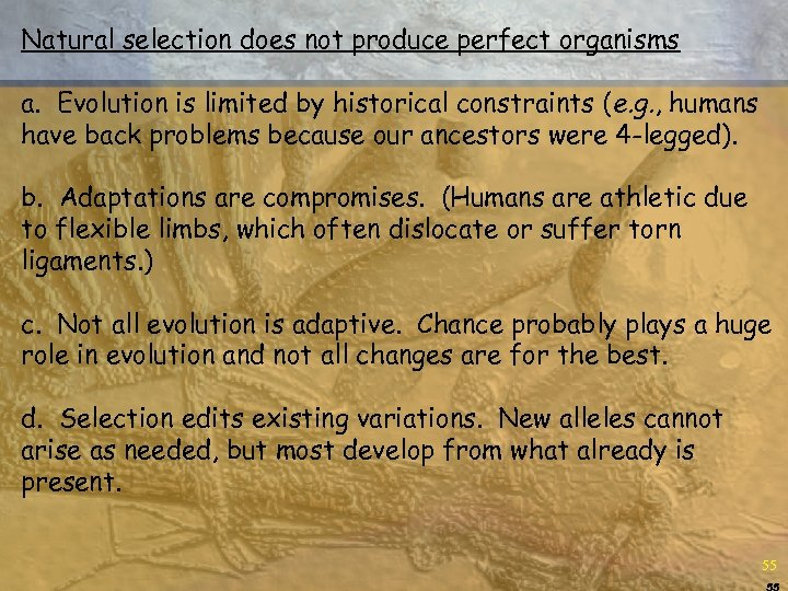 Natural selection does not produce perfect organisms a. Evolution is limited by historical constraints