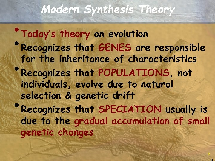 Modern Synthesis Theory • Today's theory on evolution • Recognizes that GENES are responsible