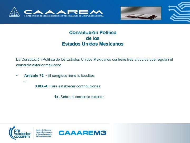Constitución Política de los Estados Unidos Mexicanos La Constitución Política de los Estados Unidos
