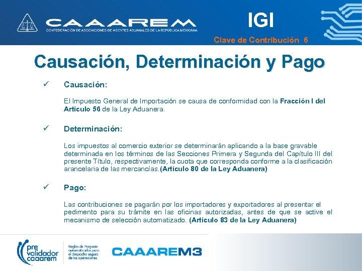 IGI Clave de Contribución 6 Causación, Determinación y Pago ü Causación: El Impuesto General