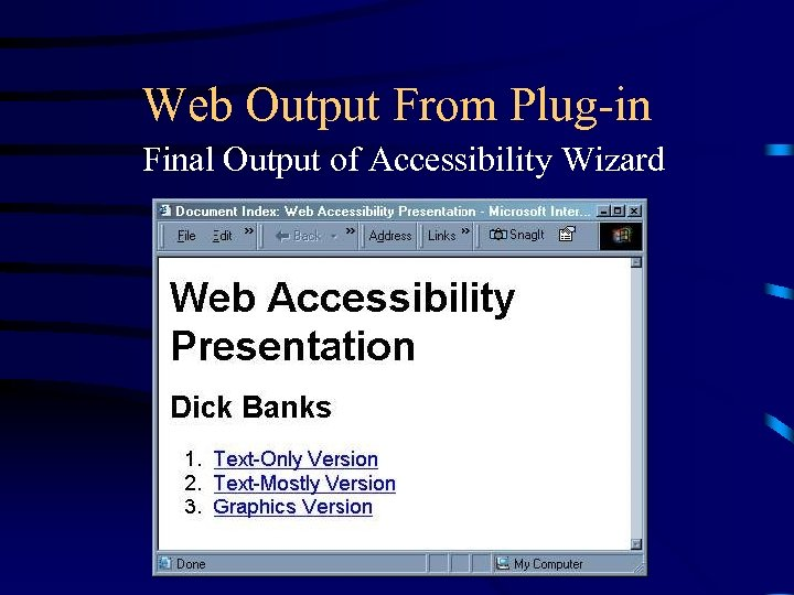 Web Output From Plug-in Final Output of Accessibility Wizard