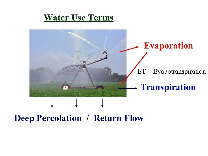 Water Use Terms Evaporation ET = Evapotranspiration Transpiration Deep Percolation / Return Flow