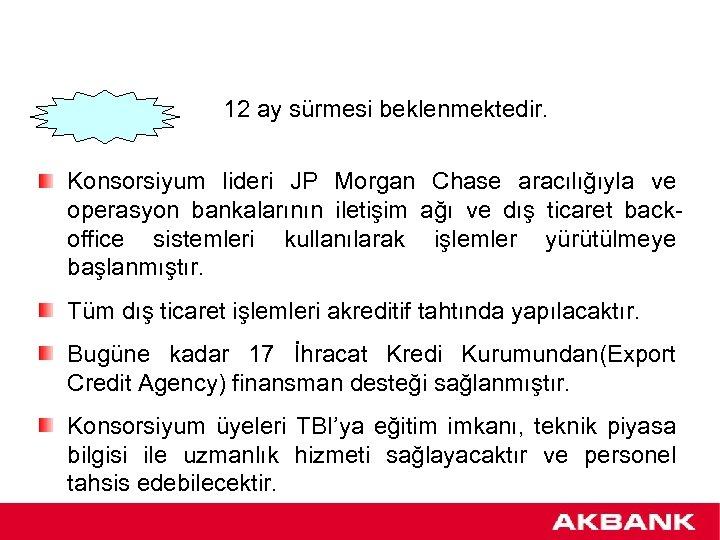 12 ay sürmesi beklenmektedir. Konsorsiyum lideri JP Morgan Chase aracılığıyla ve operasyon bankalarının iletişim