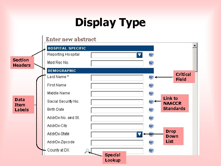 Display Type Section Headers Critical Field Link to NAACCR Standards Data Item Labels Drop