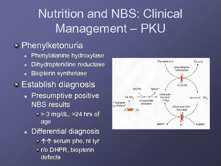Nutrition and NBS: Clinical Management – PKU Phenylketonuria n n n Phenylalanine hydroxylase Dihydropteridine
