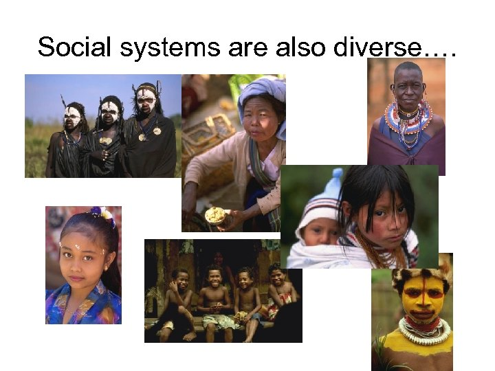 Social systems are also diverse….