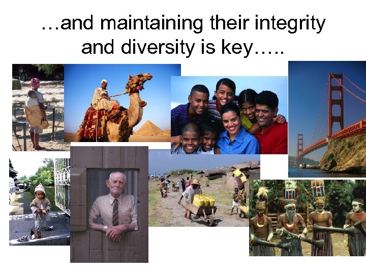 …and maintaining their integrity and diversity is key…. .