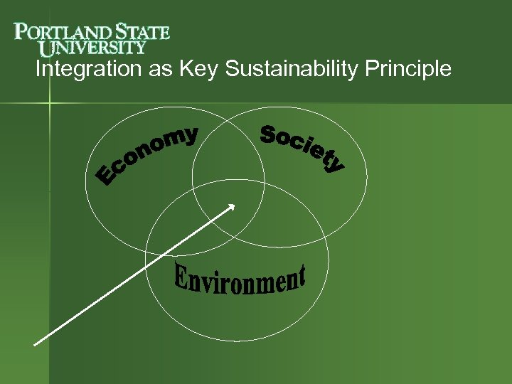 Integration as Key Sustainability Principle