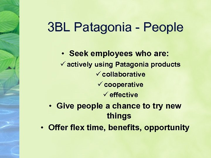 3 BL Patagonia - People • Seek employees who are: ü actively using Patagonia