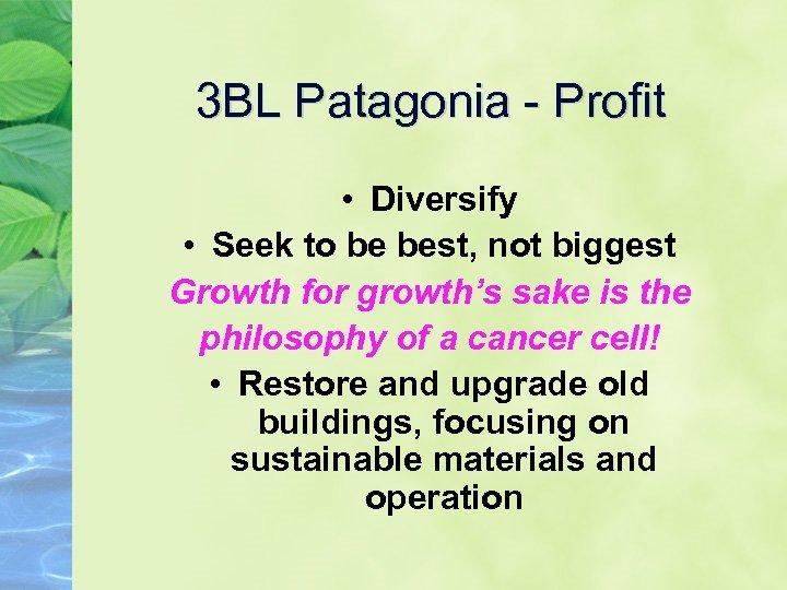3 BL Patagonia - Profit • Diversify • Seek to be best, not biggest