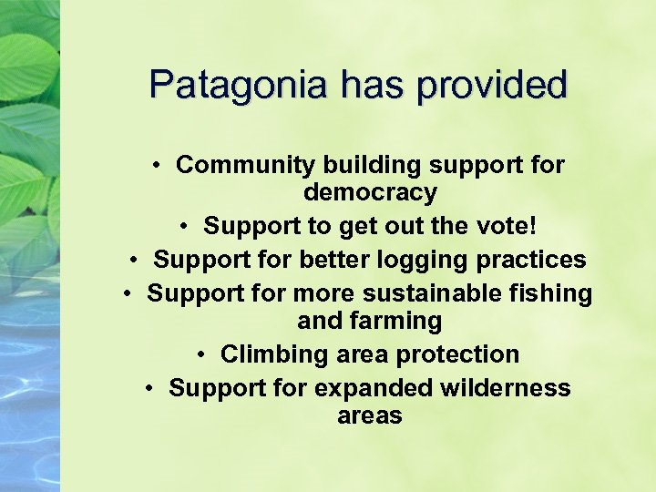 Patagonia has provided • Community building support for democracy • Support to get out
