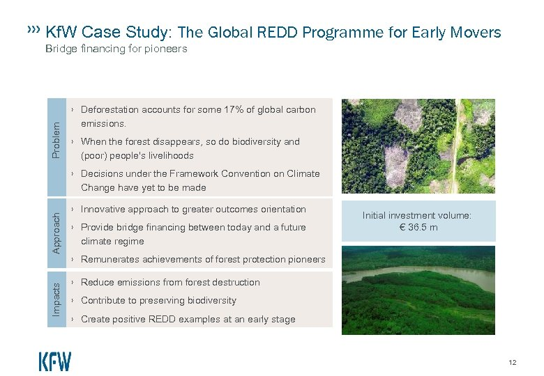 Kf. W Case Study: The Global REDD Programme for Early Movers Bridge financing for