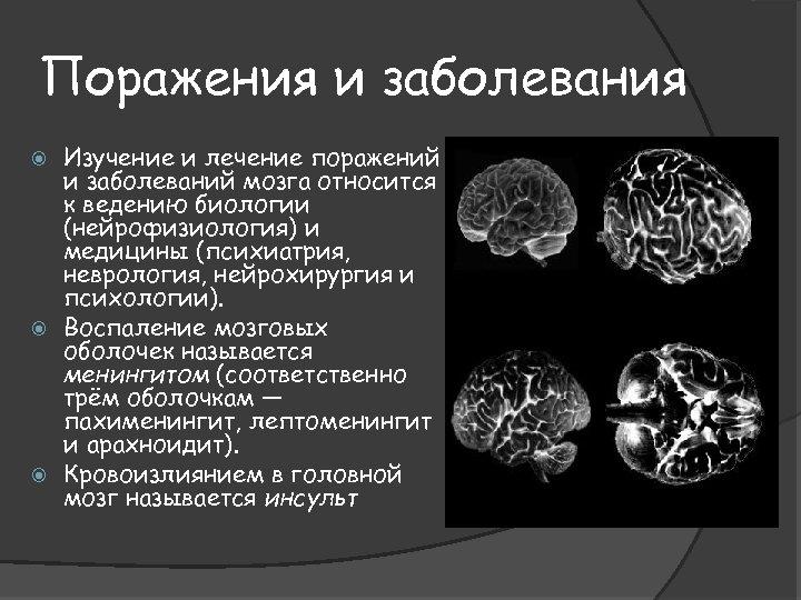 Поражения и заболевания Изучение и лечение поражений и заболеваний мозга относится к ведению биологии