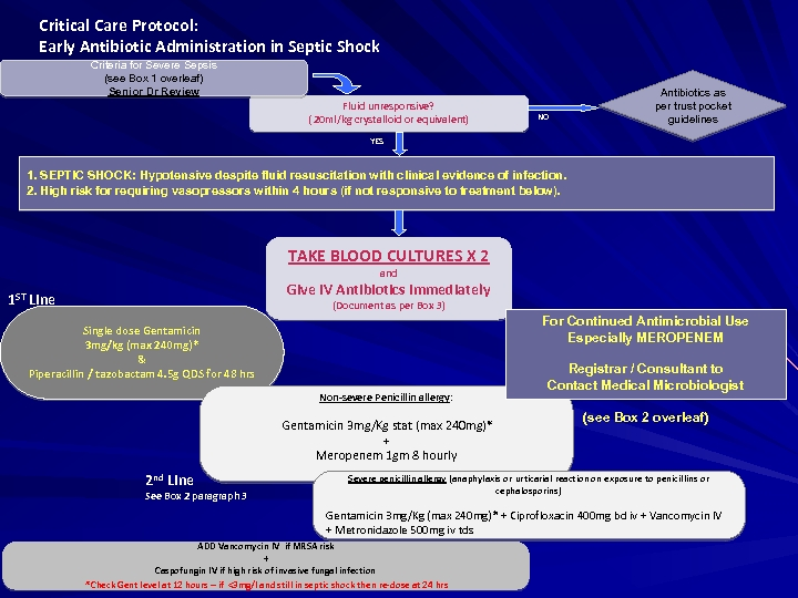 Critical Care Protocol: Early Antibiotic Administration in Septic Shock Criteria for Severe Sepsis (see