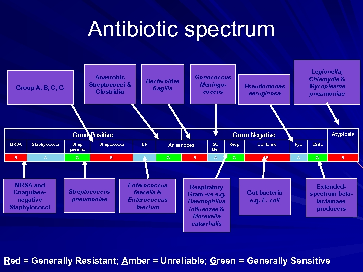 Antibiotic spectrum Anaerobic Streptococci & Clostridia Group A, B, C, G Bacteroides fragilis Gonococcus