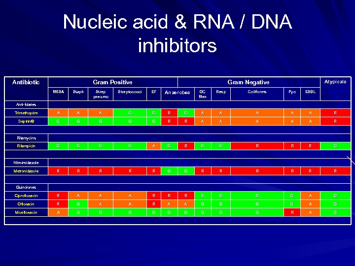 Nucleic acid & RNA / DNA inhibitors Antibiotic Gram Positive Atypicals Gram Negative MRSA