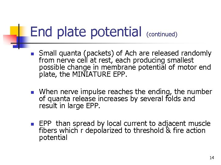 End plate potential n n n (continued) Small quanta (packets) of Ach are released